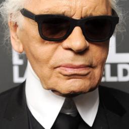 'Karl Lagerfeld aangeklaagd om sportschoenen'